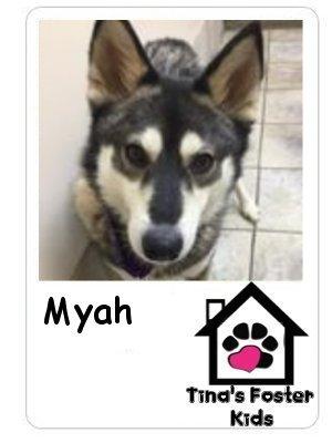 Foster kid Myah!
